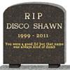 Disco Shawn is Dead -- Long Live Shawn Reynaldo