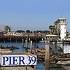 New York Times Suggests Brooklynite With Mere Four Hours to Spend in S.F. Head to -- Pier 39? Say What?