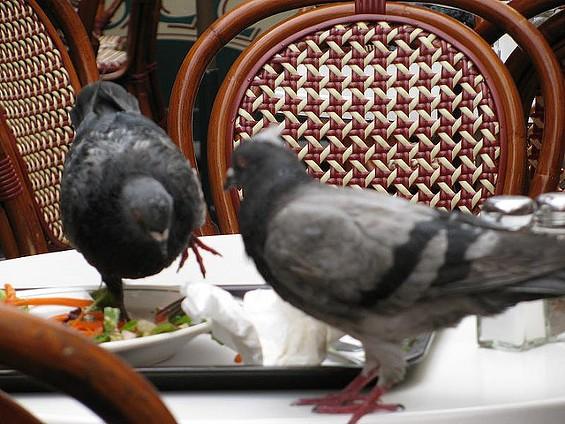 Emotionally eating? - PHOTO BY TIM WAYNE, CREATIVE COMMONS CC-BY-SA