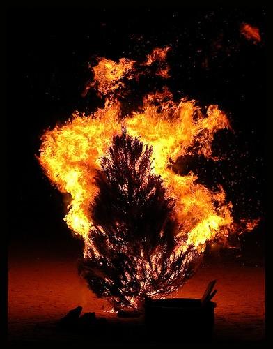 Christmas Tree Arson Evacuates Building 'Tis The Season The  - Christmas Trees On Fire