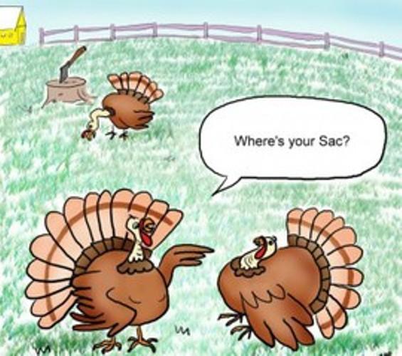 turkeys_thumb_270x239.jpg