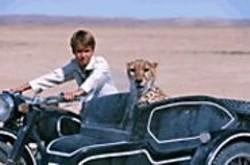 DAVID  BLOOMER - Fly Away Home: Xan (Alex Michaletos) tries - to ferry his pet cheetah, Duma, back to the - animal's original habitat.