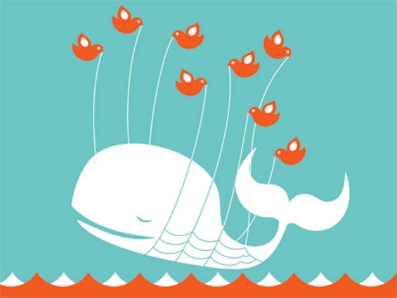 twitter_whale.png