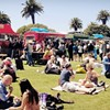 Food Trucks, Goat Soap, Wine and Views at Treasure Island Flea Market this Weekend