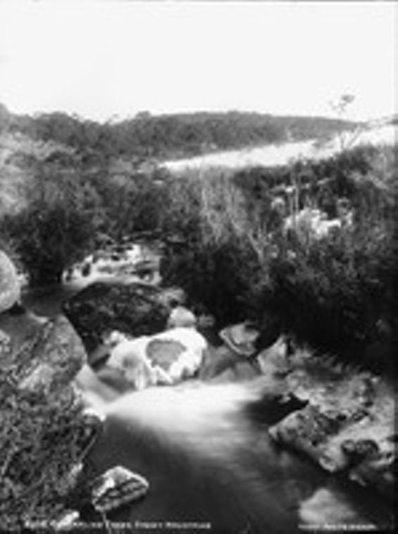 river_thumb_150x200.jpg