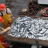 Fresh Herring to Be Sold in SF This Winter