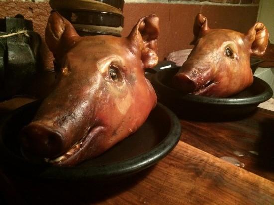 pig_heads.jpg