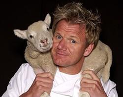 Gentle as a lamb - WIKIMEDIA