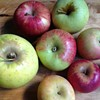 Go Apple Crazy at Local Farmers' Markets