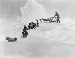 Goggin plans to use a dog and sled team like the 1929 Byrd expedition - BRIAN GOGGIN
