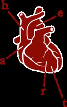 Heart's logo: Goodbye Hello Kitty, hello stumpy aorta.