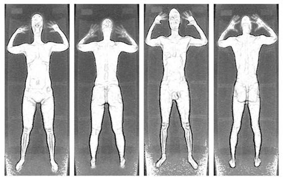 Hieroglyphics of early man or TSA scan images?