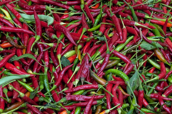 Hot right now: Thai chiles. - SEAN TIMBERLAKE