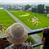 With Rice Paddy Art, Japanese Village Creates Tourist Bonanza