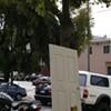 Seen In San Francisco: City's Open Door Policy Gone Awry