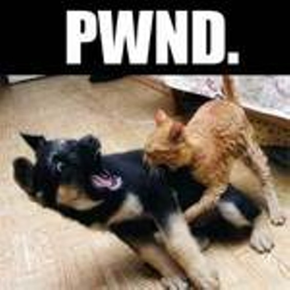 pwnd_thumb.jpg