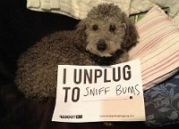 Just like his grandfather did - NATIONAL DAY OF UNPLUGGING
