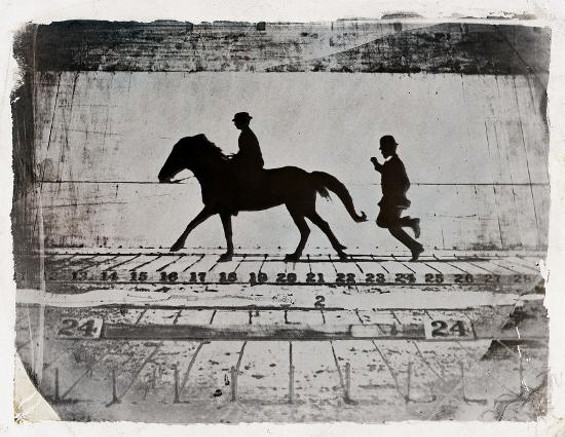 """Leland Stanford Jr. on his pony """"Gypsy"""" -- Phases of a Stride by a Pony While Cantering (1879) - EADWEARD MUYBRIDGE"""