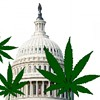 Legally Stoned At The White House: D.C. Could Beat California to Legalize Weed