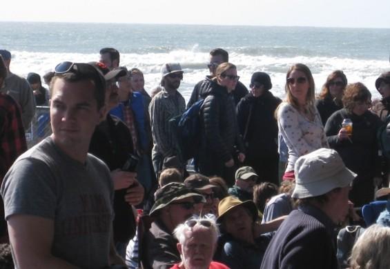 audience_and_ocean_5.jpg