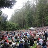 Live Review, 7/1/12: Preservation Hall Jazz Band Soundtracks a Chill Afternoon at Stern Grove