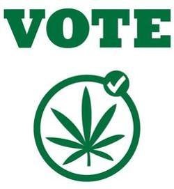 1175989_1146043_marijuana_vote_logo.jpg_thumb_540x584_thumb_250x270.jpeg