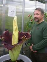 Martin Grantham and the corpse flower - JOE ESKENAZI