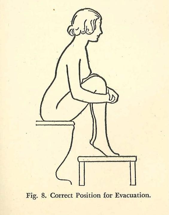 studies_in_crap_womans_hygiene_evacuation.jpg