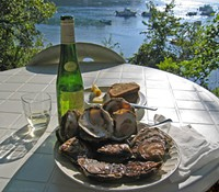No more oysters? Zut alors!