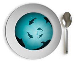 No more shark fin soup for you!