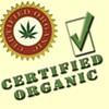 Is Your Medical Marijuana Organic?