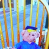 Junkie Teddy Bear Ditches College Degree for Heroin Habit