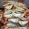 No Fresh Dungeness Crabs for Thanksgiving