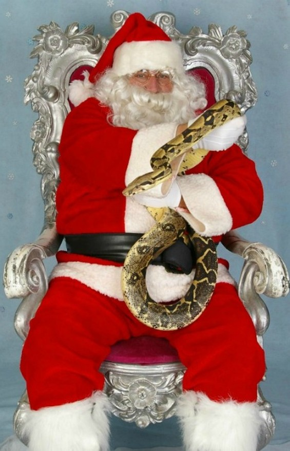 Now we're curious. What does a snake want for Christmas? - THANKS TO THE PENINSULA HUMANE SOCIETY