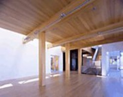 COPY;2005  IKONPHOTO - Ogrydziak/Prillinger Architect's T House.