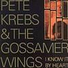 Pete Krebs & the Gossamer Wings
