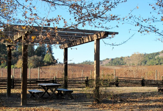 Picnic table out front of the winery - LOU BUSTAMANTE