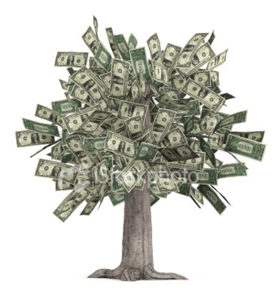 money_tree1.jpg