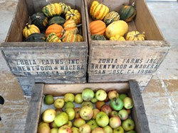 ANNA ROTH - Produce is arranged in attractive, rustic boxes.