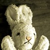 Rabbit's Run