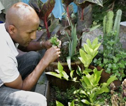 Radio Africa's Eskender Aseged in an herb garden.