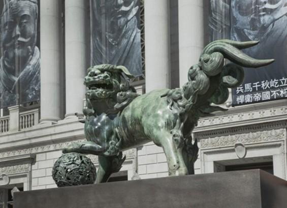 lions1.jpg