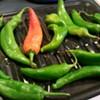 Rocky's Frybread Brings Green Chile Season to El Rio