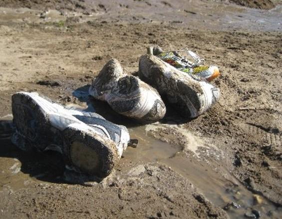 lostshoes_thumb_500x388.jpg