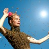 """""""Queen of the Sun"""": Documentary Looks at Bee Colony Collapse"""