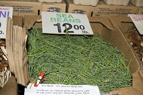 Sea beans (aka glasswort) for sale at Ferry Plaza. - .IMELDA/FLICKR