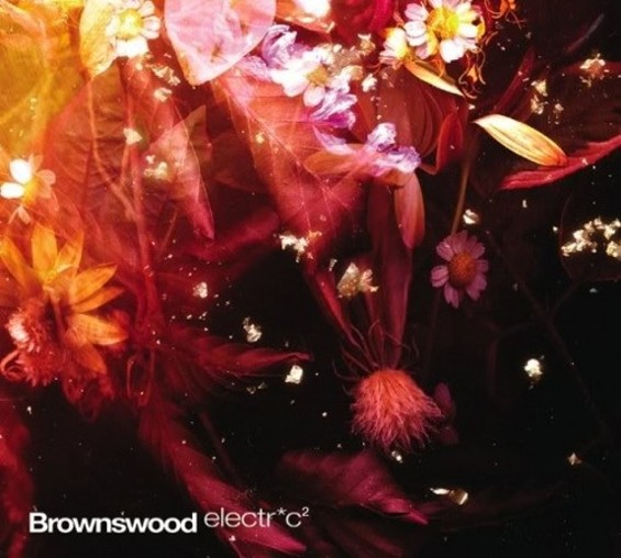 brownswood_electrc_2_42.jpg