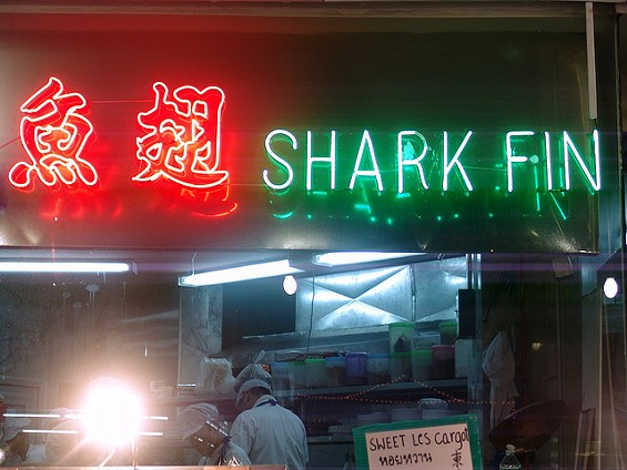 Shark finning has become a focal point all over the Chinese diaspora for discussions about environmental issues. - POLYTROPOS/FLICKR