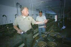 Sheriff Tom Allman of Mendocino County - CNBC