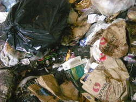 Should the city's garbage contract go here?